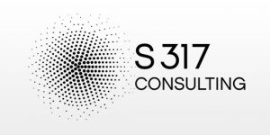 S317 Consulting