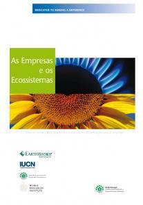 As empresas e os ecossistemas – resumo temático